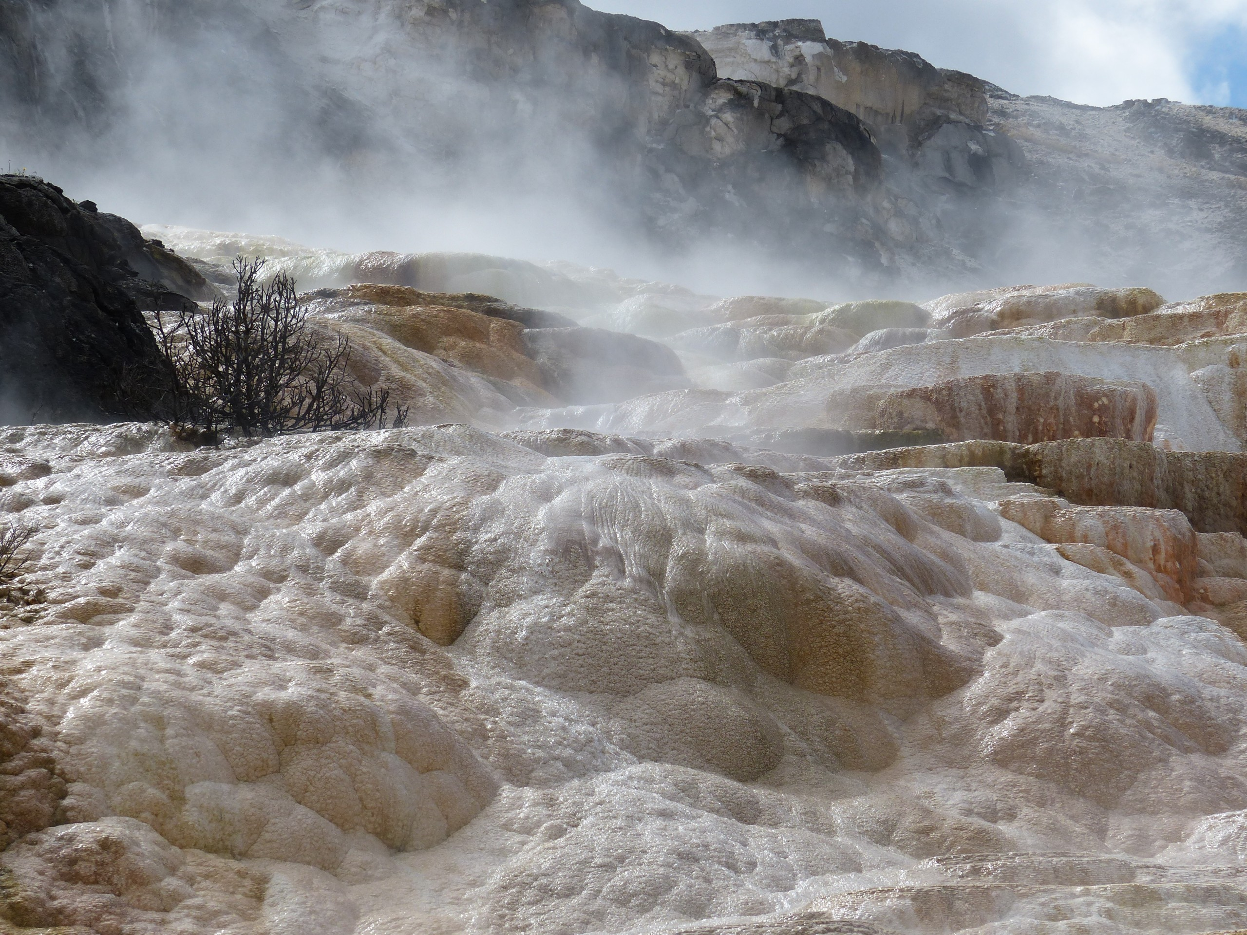 De kalkterrassen van Mammoth Hot Springs